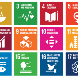 picture of sustainable development goals